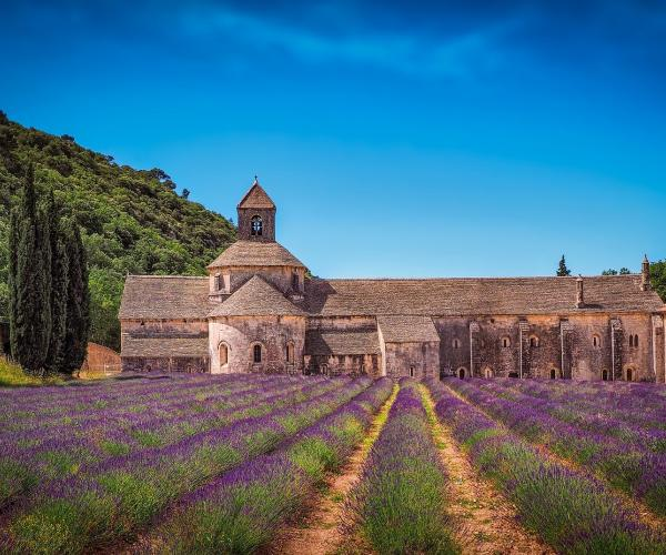 Luberon : Senteurs de Provence