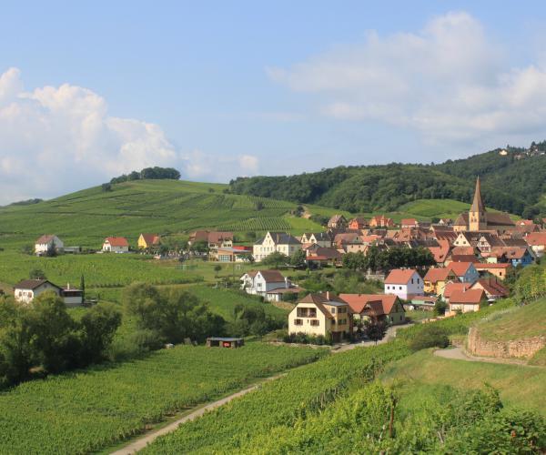 Alsace et Hautes-Vosges