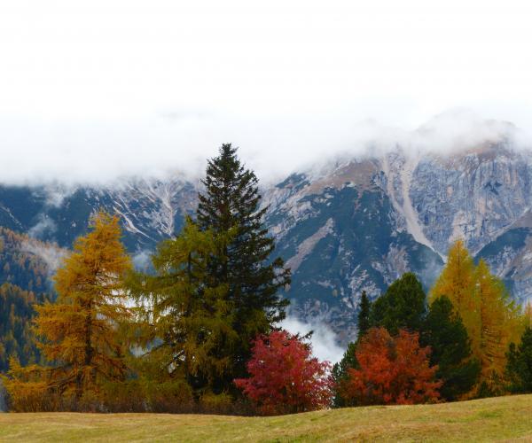 Italie : Les Dolomites