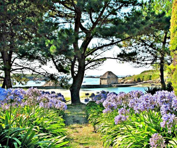 Séjour Réveillon en Bretagne : Paimpol et sur l'île de Brehat