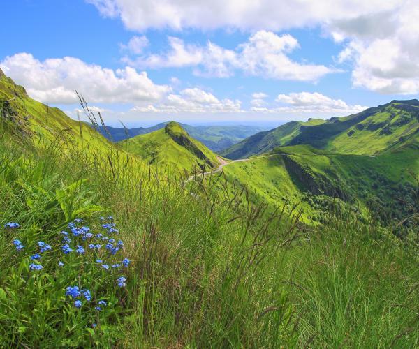 Auvergne : Les Monts du Cantal