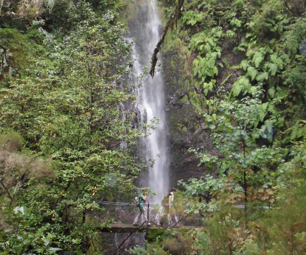 Ile de Madère : Randonnée de Picos en levadas