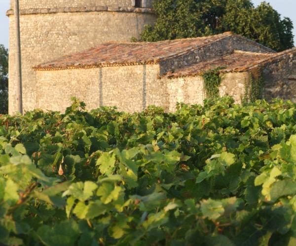 Aquitaine : Le Médoc