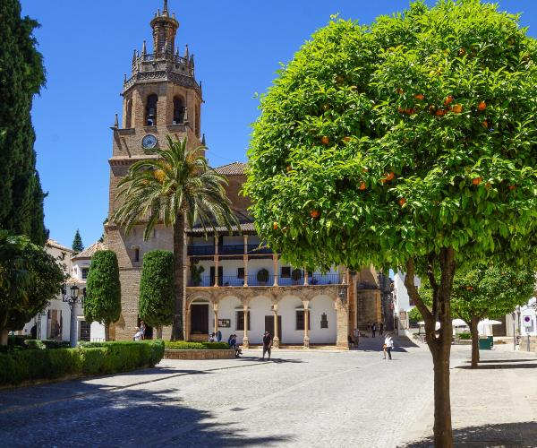 Espagne : Andalousie de Ronda a Tarifa