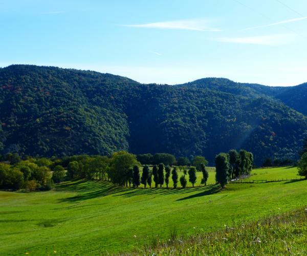 Auvergne du Sud : Gastronomie et Randonnée