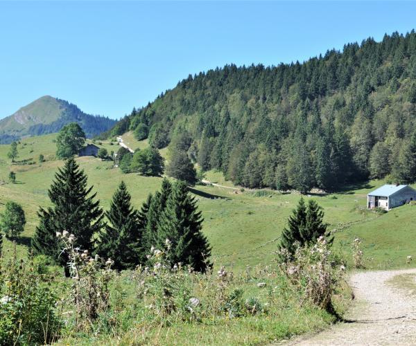 Jura : Monts et Comté