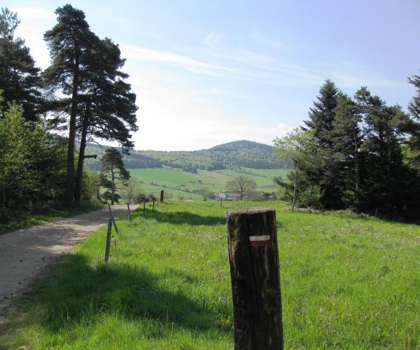 Auvergne : Le Tour des volcans du Velay