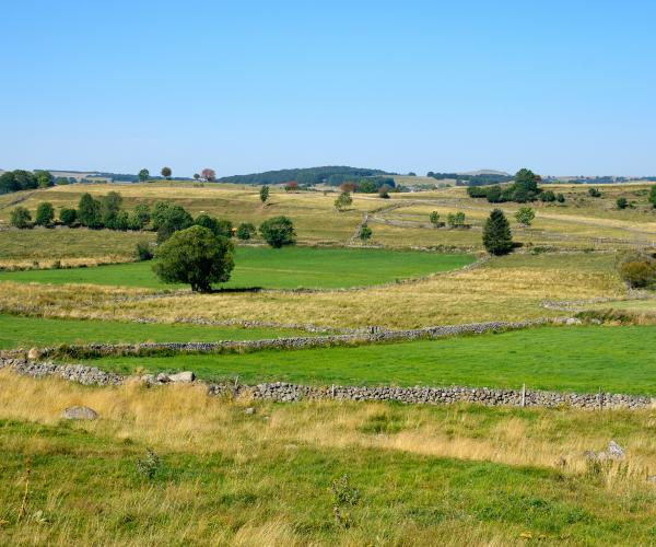 Lozère : Au cœur du Gévaudan entre Aubrac et Margeride