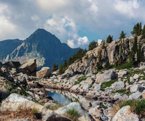 Alpes : Bien-être et Mercantour