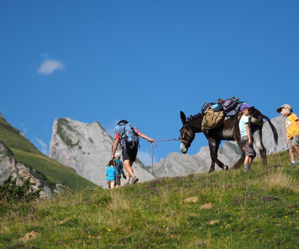 Le tour du Val d'Azun en famille avec un âne