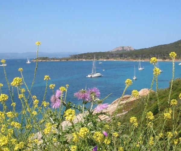 Provence : Les îles d'or et la Presqu'île de Giens