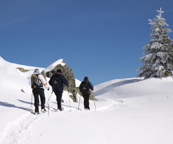 Ardèche : Raquettes sur la ligne de partage des eaux des monts d'Ardèche