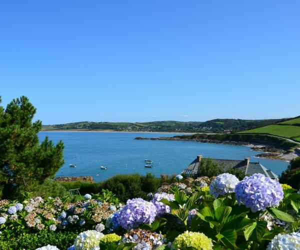 Normandie - Cotentin : De Portbail à Regneville sur Mer