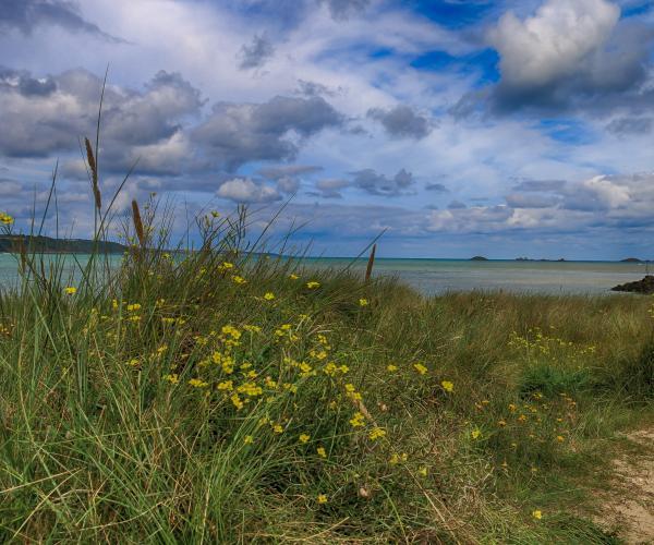 Bretagne : De Lannion à Morlaix