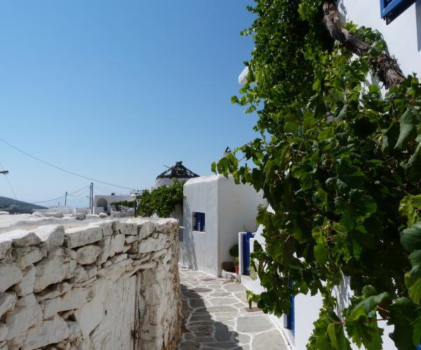 Grèce : Les Cyclades Naxos, Amorgos et Santorin