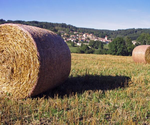 Auvergne Livradois Forez : Entre Ambert et La Chaise Dieu