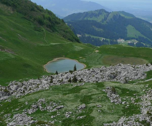 Entre Suisse et France : Sentiers et saveurs du Léman