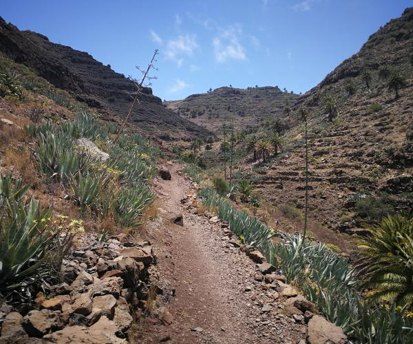 Espagne Canaries : L'île de la Gomera