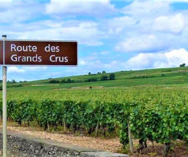 Bourgogne Grand Cru