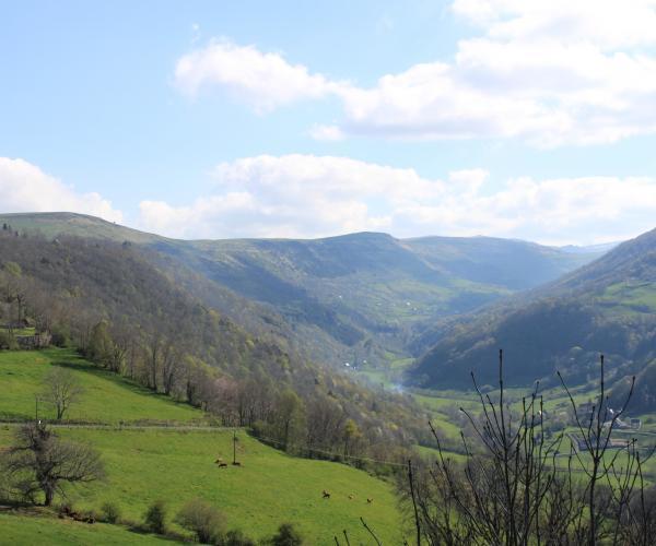 Auvergne : Découvertes et randonnées au pays de Salers