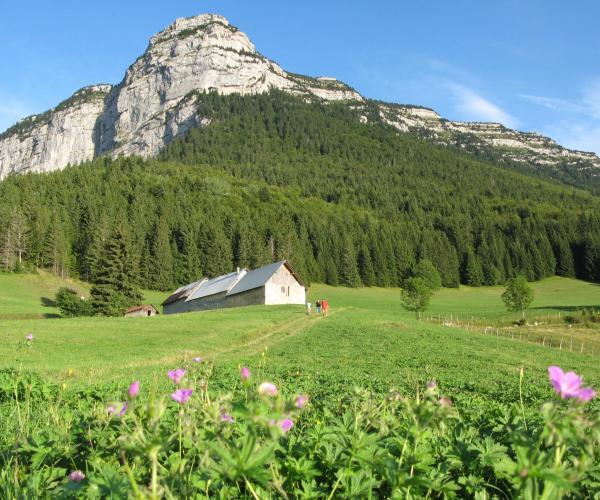 Alpes : Tour de la Chartreuse