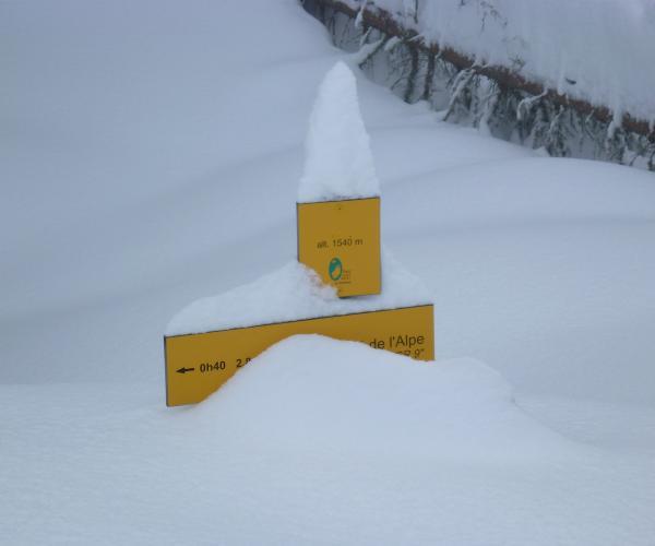 Alpes : Raquettes et balnéo dans le Parc de Chartreuse