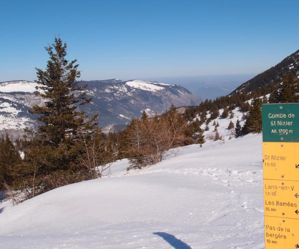 Alpes : Vercors au pays des 4 montagnes en raquettes