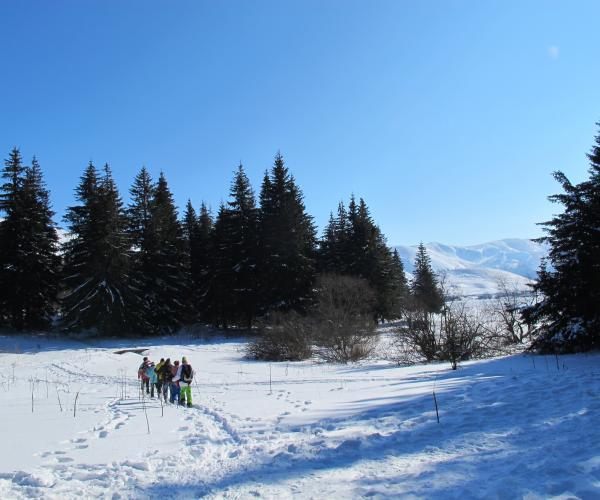 Auvergne : Le Sud du Sancy en Raquettes