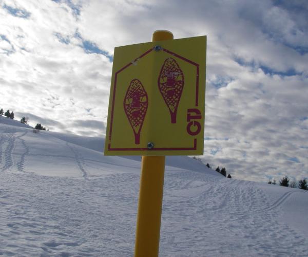 Jura : La grande traversée à raquettes