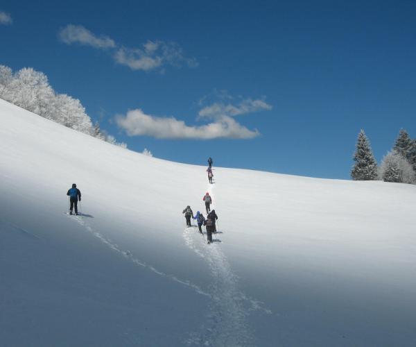 Alpes : Vercors, les essentiels du tour en raquettes