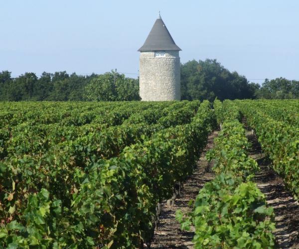 Aquitaine : Le Bassin d'Arcachon