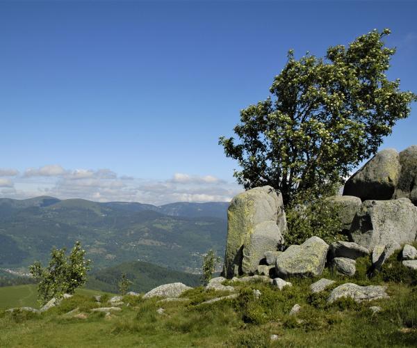 Vosges - Alsace : Traversée des Hautes-Vosges
