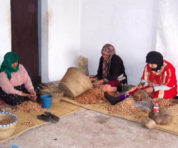 Maroc : Randonnée et Bien-Être à Essaouira